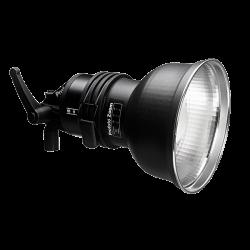 Profoto Acute/D4 Head avec lampe pilote 250w
