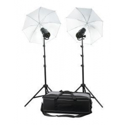 Profoto Kit flash Studio D1 500/500 (sans Air Remote)