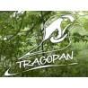 Tragopan Photography Hide Tragopan V5 Brown