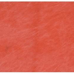 Falcon Eyes Fantasy 3x6m Red Fond de studio