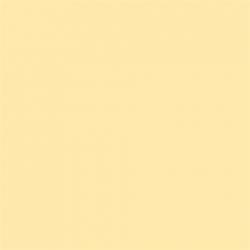 Picture Concept Cream Background paper 2,72mx11m