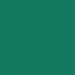 Picture Concept Deep Green Background paper 2,72mx11m