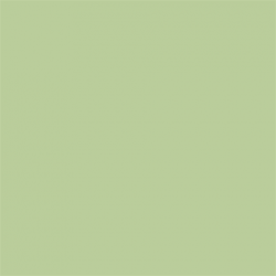 Picture Concept Tropical Green Background paper 2,72mx11m