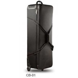 Godox Carrying Bag CB01